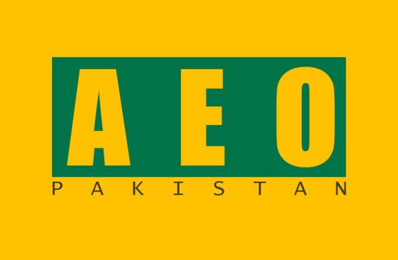 AEO Ad Campaign
